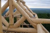 Structure de ferme de toit en bois rond